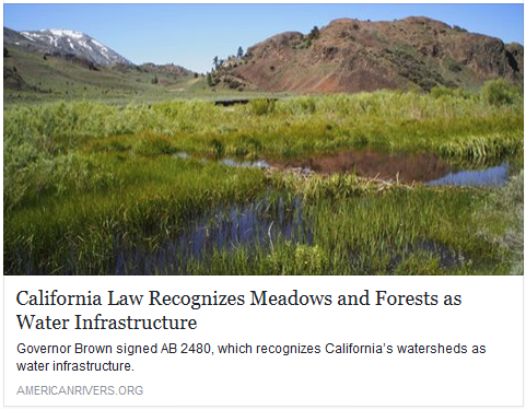 AB 2480 Meadows and Forest Water Infrastructure.png