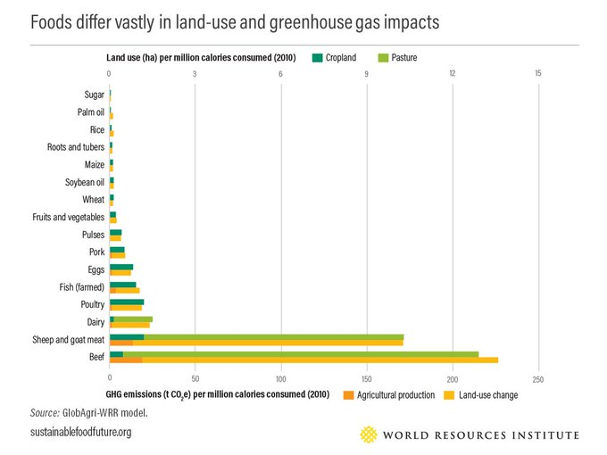 Ag production and GHG emissions.jpg