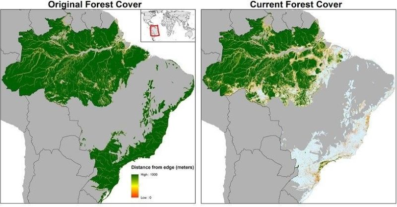 Amazon deforestation timeline.jpg