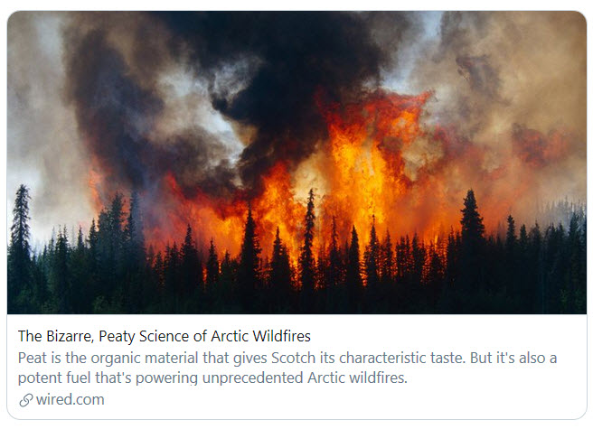 Arctic wildfires-July 2019.jpg