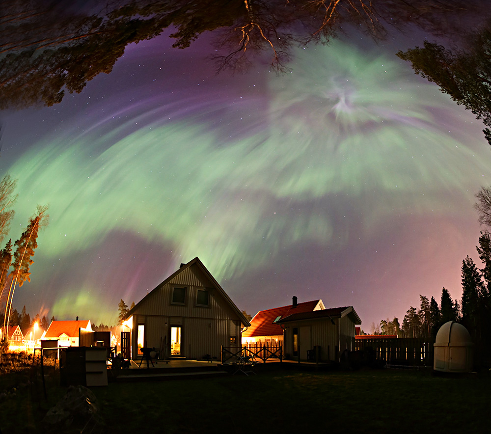 Aurora Backyard Heden.jpg