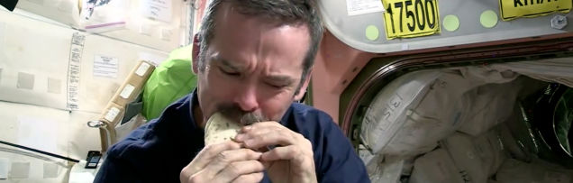 Chris and the Space Tortilla folded.jpg