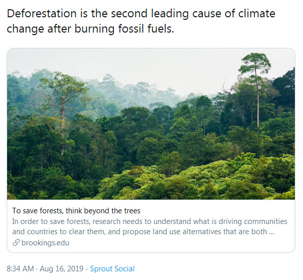 Deforestation no.jpg