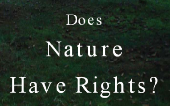 Does Nature Have Rights.png