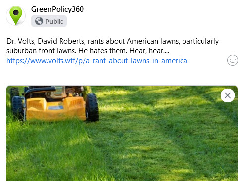 Dr Volts talks of lawns and their problems.jpg