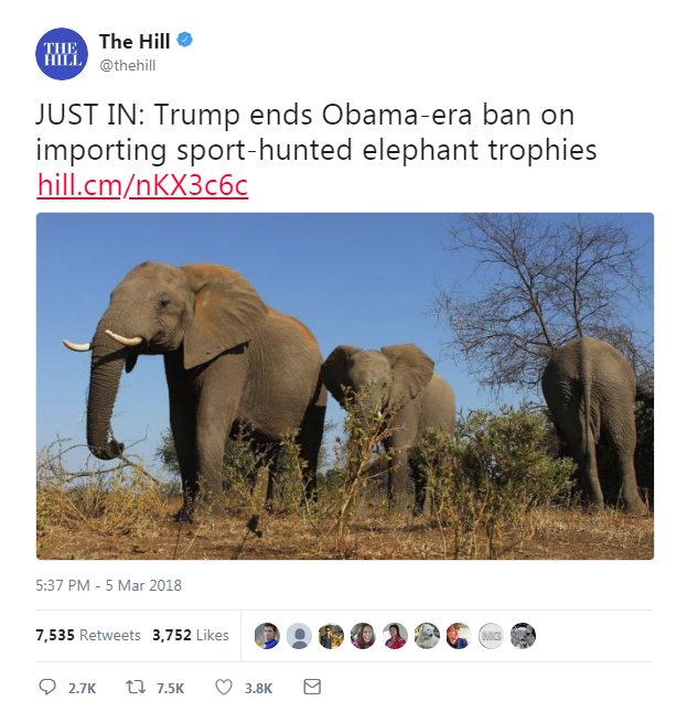 Elephant trophies.png