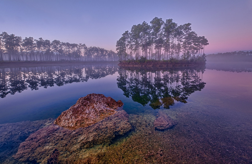 Everglades dawn Photo courtesy of Glenn Nagel.png