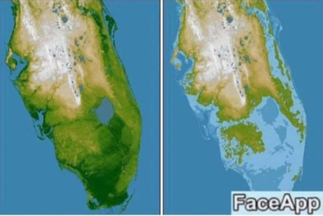 FaceApp Florida.jpg