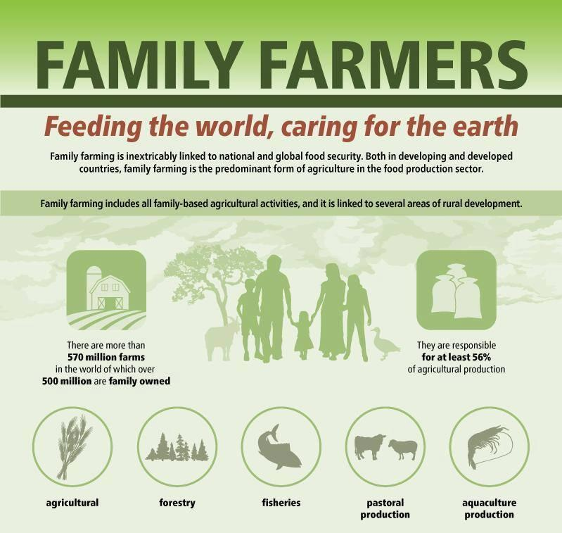 Family farms over 500 million.jpg