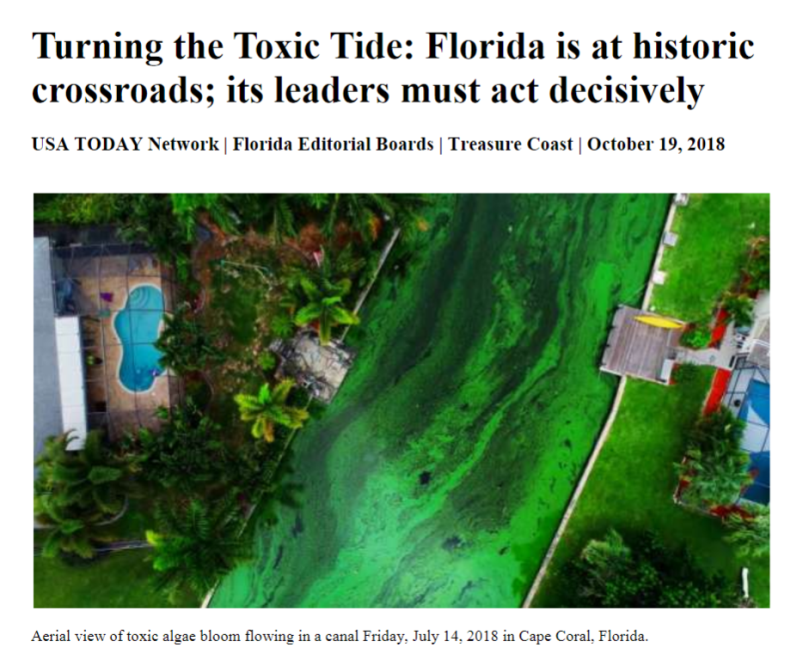 Florida at crossroads-Turning the Toxic Tide.png