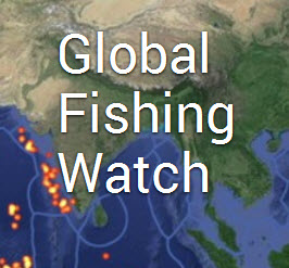 Global Fishing Watch 2.jpg