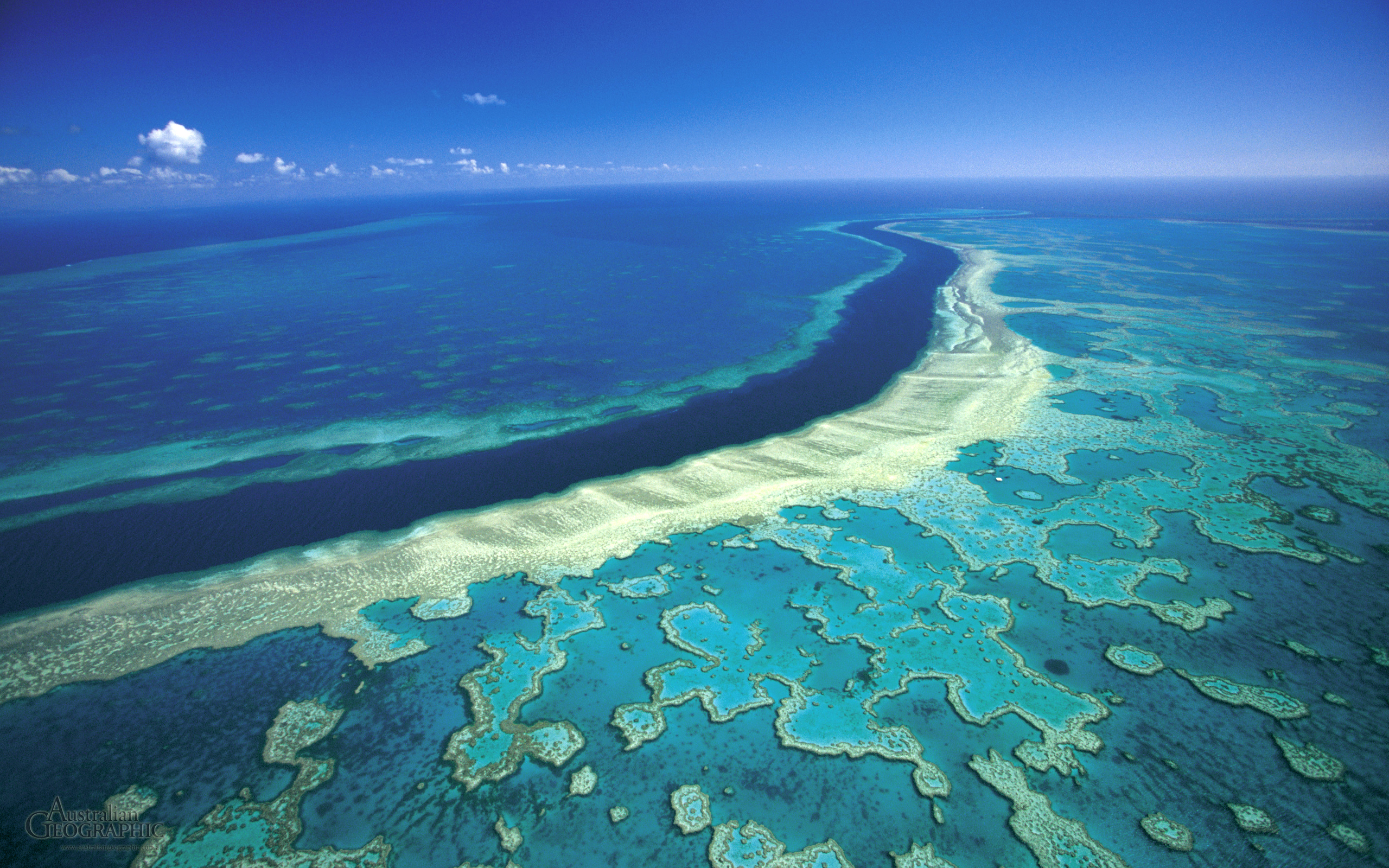 Great-barrier-reef-2011 image credit, mike mccoy.jpg