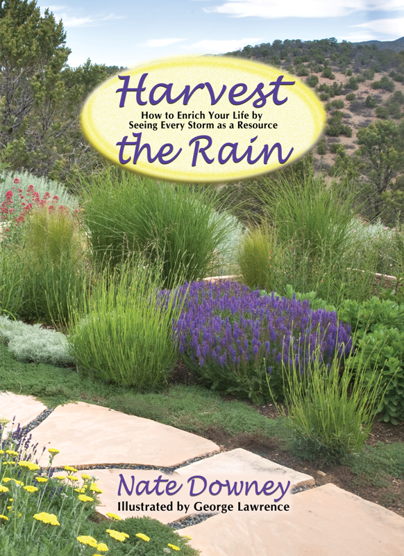 Harvest the Rain cover .png