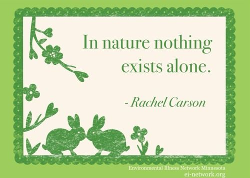 In nature, nothing exists alone.jpg