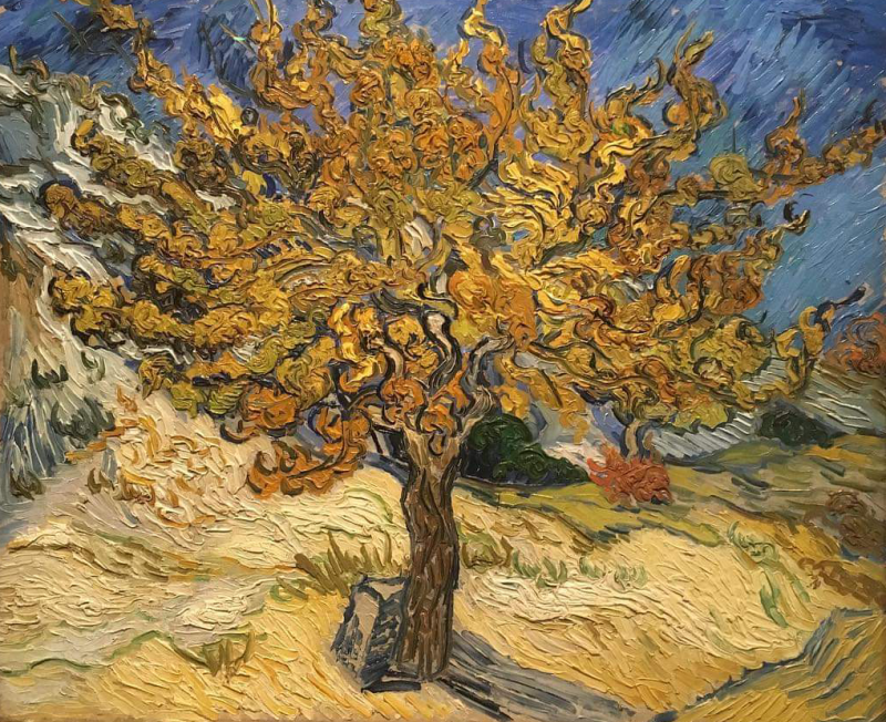 Mulberry Tree by Van Gogh.png