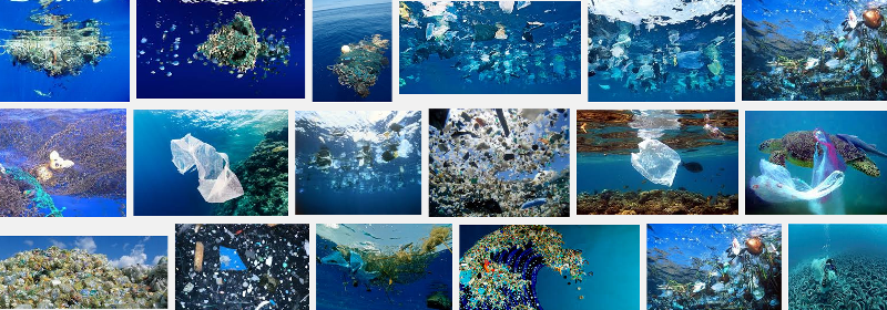 Ocean Pollution w Plastic-800x280.png