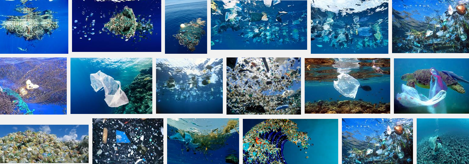 marine pollution solution Biologists have prepared guidelines for a more precise investigation into marine pollution from microplastic particles.