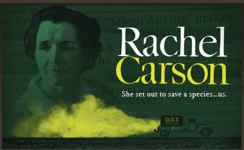 Rachel Carson American Experience.png
