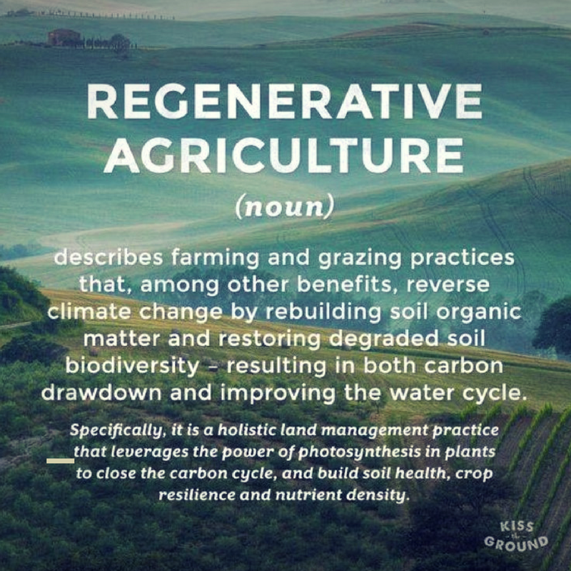 Regenerative Ag - Kiss the Ground - The Secret is in the Soil.png