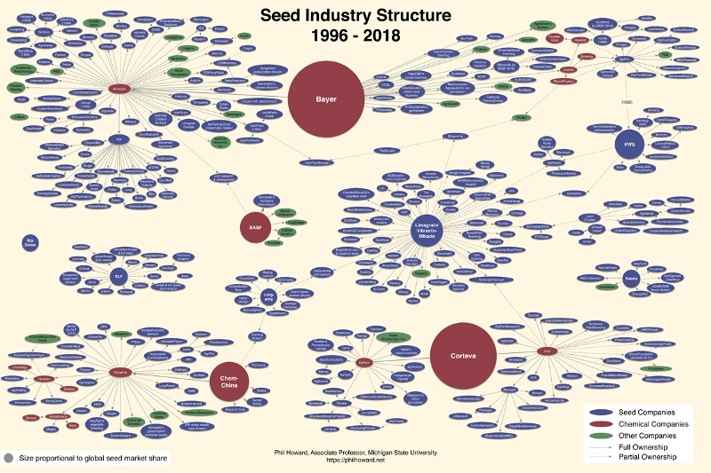 Seed-monopoly-consolidation-chart-2018.jpg