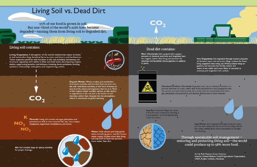Soil-vs-dirt-infographic.jpg