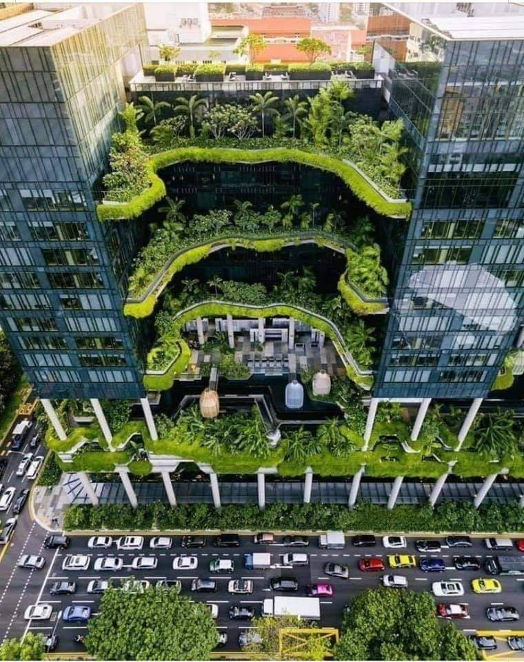 Urban Forest - Singapore Office Building.jpg