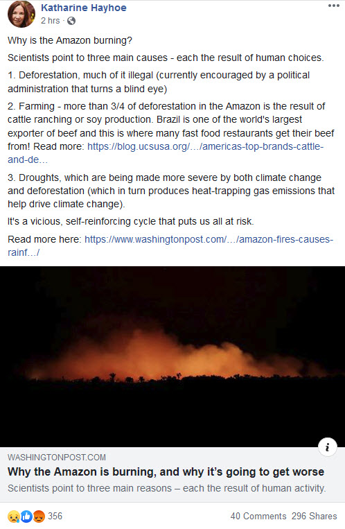 Why is the Amazon burning - Katharine Hayhoe explains.jpg