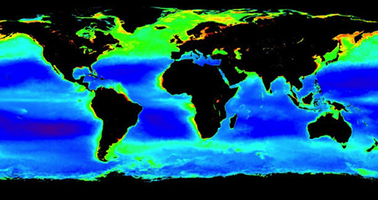 Worldwide view of plankton www.phys.org.jpg